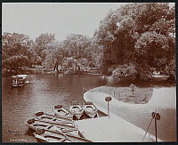 0163879 © Granger - Historical Picture ArchiveBOSTON: PUBLIC GARDENS.   The lake and row boats for rent at the Boston Public Gardens. Photograph, 1904.