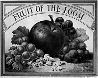 0129081 © Granger - Historical Picture ArchiveFRUIT OF THE LOOM.   Trademark for the American clothing company, best known for manufacturing men's and boy's underwear, founded, in Rhode Island, 1851.