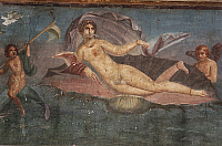 0280654 © Granger - Historical Picture ArchiveARCHAEOLOGY.   Detail of a fresco in the House of Venus in seashell, Pompeii (UNESCO World Heritage List, 1997), Campania. Roman Civilization, 1st Century. Full Credit: DEA / A. VERGANI / Granger, NYC -- All rights reserved.
