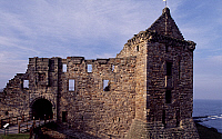 0284805 © Granger - Historical Picture ArchiveART & ARCHITECTURE.   View of St Andrews Castle, Fife. Scotland, 14th-16th century. Full Credit: DEA / W. BUSS / Granger, NYC -- All Rights Reserved.