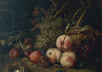 0308364 © Granger - Historical Picture ArchiveFINE ART.   Rachel Ruysch (1664-1750), Still Life with Fruit and Insects, 1711, oil on canvas, 44x60 cm. Detail. Full Credit: DEA / G. NIMATALLAH / Granger, NYC -- All rights reser
