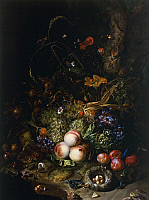 0308370 © Granger - Historical Picture ArchiveFINE ART.   Still life with fruit, flowers, reptiles and insects, by Rachel Ruysch (1664-1750). Full Credit: DEA / G. NIMATALLAH / Granger, NYC -- All rights reserved.