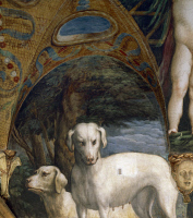 0326936 © Granger - Historical Picture ArchiveART & ARCHITECTURE.   A pair of dogs, detail from the Myth of Diana and Actaeon, ca. 1524, by Francesco Mazzola known as Parmigianino (1503-1540), fresco, north side of the Room of Diana and Actaeon, Rocca Sanvitale, Fontanellato, near Parma, Emilia-Romagna. Italy, 16th century. Full credit: De Agostini / A. De Gregorio / Granger, NYC -- All rights reserved.
