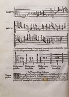 0346722 © Granger - Historical Picture ArchiveLITERATURE & THE ARTS.   Page from Musicae Actionis, treatise by Franchino Gaffurio (1451-1522), Italian composer and music theorist. Full credit: De Agostini / N. Marullo / Granger, NYC -- All Rights Reserved.