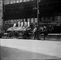 0172077 © Granger - Historical Picture ArchivePRODUCE CART, 1937.   New York City food vendor.