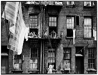 0172192 © Granger - Historical Picture ArchivePEOPLE ON FIRE ESCAPES.   Back of a tenement; people on fire escapes; laundry on the clothesline. New York City, 1935.