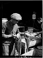 0172382 © Granger - Historical Picture ArchiveFULTON STREET MARKET, 1938.   Man with sea bass at the Fulton Street Market, New York City. Photograph, 1938.