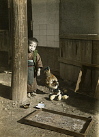 0245737 © Granger - Historical Picture ArchiveJAPAN.   A young boy in a kimono stands near a hen and her chicks. Eliza R. Scidmore.