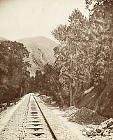 0247491 © Granger - Historical Picture ArchiveSYRIA.   The Beirut-Damascus Railroad runs through cedar forests and mountains. Archibald Forder.