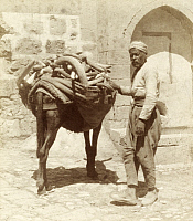 0247498 © Granger - Historical Picture ArchiveDAMASCUS, SYRIA.   A vendor and his camel burdened with a large load of cucumbers. Archibald Forder.