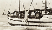 0247585 © Granger - Historical Picture ArchiveBERING SEA.   Walrus hunters haul a dead polar bear aboard their sailing vessel. Dobbs.
