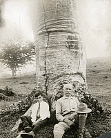 0248023 © Granger - Historical Picture ArchivePANAMA.   A writer and his son sit at the base of a cuipo tree. Henry Pittier.