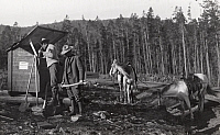 0248070 © Granger - Historical Picture ArchiveCOLORADO.   Forest officers and horses preparing to work in a forest fire. No Credit Given.