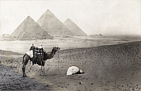 0248207 © Granger - Historical Picture ArchiveGIZEH, EGYPT.   A man kneels in prayer next to his camel near the pyramids of Giza. A. W. Cutler.