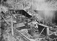 0248390 © Granger - Historical Picture ArchiveFORMOSA.   Taiwanese prepare camphor for export. Inazo Nitobe.