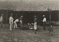 0253252 © Granger - Historical Picture ArchiveLAS TRES MARIAS, MEXICO.   A cook chops meat for dinner as others look on and animals roam about. Clifton R. Adams.