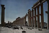 0255791 © Granger - Historical Picture ArchivePALMYRA, SYRIA.   A view of the ruins of a Syrian grand colonnade. Maynard Owen Williams.