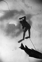 0256817 © Granger - Historical Picture ArchiveWISCONSIN: ICE FISHING.   An ice fisherman drags a carp upward toward a hole in the lake's ice at Upper Nemahbin Lake in Wisconsin. Thomas J. Abercrombie.