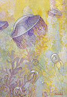 0257024 © Granger - Historical Picture ArchiveARTWORK.   A painting of two different species of jellyfish. William H. Crowder.
