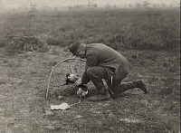 0257892 © Granger - Historical Picture ArchiveHOLLAND, THE NETHERLANDS.   A falconer removes a peregrine lured by a decoy pigeon to a net. Louis Agassiz Fuertes.