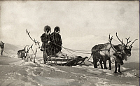 0258596 © Granger - Historical Picture ArchiveALASKA, USA.   Two Inuit mushers stand on a sled behind two reindeer. Lomen Brothers.