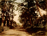 0075949 © Granger - Historical Picture ArchiveJAPAN: RURAL ROAD, 1880s.   Hand-tinted albumen photograph by Farsari & Co., 1880s.