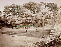 0075952 © Granger - Historical Picture ArchiveJAPAN: TOKYO, 1880s.   Garden at Uyeno (Tokyo). Hand-tinted albumen photograph by Farsari & Co., 1880s.