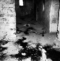 0149879 © Granger - Historical Picture ArchiveLE MASSACRE OF MELOUZA.   Massacre by the FLN of 315 persons of Melouza in Mechta Casbah par le FLN june 01, 1957 , (this action was directed against supporters of theAlgerian National Movement -MNA-) during the war in Algeria. Full credit: AGIP - Rue des Archives / Granger, NYC -- All rights reserv