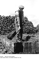 0074870 © Granger - Historical Picture ArchiveIRELAND: SOD FARMER.   An Irish sod farmer removing bricks of turf for fuel. Photograph.