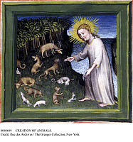 0080689 © Granger - Historical Picture ArchiveCREATION OF ANIMALS.   God creating the animals. French miniature, 15th century.
