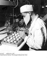 0111911 © Granger - Historical Picture ArchiveASIAN FLU, 1957.   Working on chicken eggs at the Pasteur Institute in Paris, France, to develop a vaccine against the Asian flu, 19 September 1957.