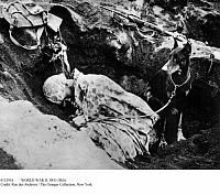 0112916 © Granger - Historical Picture ArchiveWORLD WAR II: IWO JIMA.   An American soldier asleep in a dugout in volcanic ashes, guarded by his doberman, 16 March 1945, at the end of the Battle of Iwo Jima.