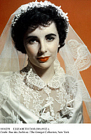 0116258 © Granger - Historical Picture ArchiveELIZABETH TAYLOR (1932-2011).   American (English-born) actress. In the film, 'Father of the Bride,' directed by Vincente Minnelli, 1950.