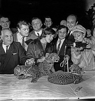 0135225 © Granger - Historical Picture ArchiveANNIE CORDY.   Joseph Bouglione, Jean Marais, Jean Richard, Colette Renard, Firmin Bouglione, Pierre Tchernia and Annie Cordy in Paris for naming of 3 little panthers. Full credit: AGIP - Rue des Archives / Granger, NYC -- All rights reserv