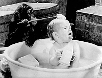 0138072 © Granger - Historical Picture ArchiveCHIMPANZE.   Little girl Jane taking a bath with the help of her chimpanzee. Photograph, 11 March 1982. Full credit: AGIP - Rue des Archives / Granger, NYC -- All rights reserved.