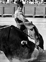 0140649 © Granger - Historical Picture ArchiveEL CORDOBES.   spanish toreador Manuel Benitez called El Cordobes during bullfight in Frejus France july 22, 1968 taureau bull. Full credit: AGIP - Rue des Archives / Granger, NYC -- All Rights Reserved.