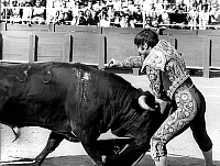0140651 © Granger - Historical Picture ArchiveEL CORDOBES.   spanish toreador Manuel Benitez called El Cordobes during bullfight in Frejus France july 22, 1968 taureau bull. Full credit: AGIP - Rue des Archives / Granger, NYC -- All Rights Reserved.