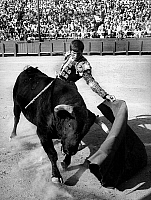 0140657 © Granger - Historical Picture ArchiveEL CORDOBES.   spanish toreador Manuel Benitez called El Cordobes during bullfight in Frejus France july 22, 1968. Full credit: AGIP - Rue des Archives / Granger, NYC -- All rights