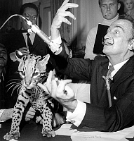 0160123 © Granger - Historical Picture ArchiveDALI AND OCELOT.   Salvador Dali with ocelot during radioprogram on RTL, May 6, 1967. Full credit: AGIP - Rue des Archives / Granger, NYC -- All rights reserved.
