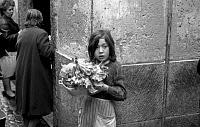 0185562 © Granger - Historical Picture ArchivePORTUGAL: GIRL, 1966.   A girl selling lettuce on the street in Lisbon, Portugal. Photograph, 1966. Full credit: Gerald Bloncourt - Rue des Archives / Granger, NYC -- All rights re