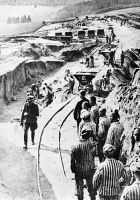 0073194 © Granger - Historical Picture ArchiveCONCENTRATION CAMP.   Prisoners from the concentration camp Mauthausen doing forced labor at the quarry, undated.