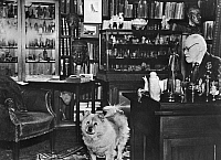 0073264 © Granger - Historical Picture ArchiveSIGMUND FREUD, 1936.   Sigmund Freud, Austrian psychiatrist, with his dog in his study in Berggasse 19, Vienna, 1936. Full credit: Sigmund Freud Copyright - ullstein bild / Granger, NYC -- All Rights Reserved.