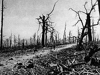 0127819 © Granger - Historical Picture ArchiveWORLD WAR I.   World War I. Verdun. Road nearby Fort Souville (south of Fort Douaumont) which has been destroyed by shellfire. 26.07.1916