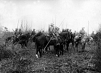 0128139 © Granger - Historical Picture ArchiveWORLD WAR I: AISNE, 1917.   German cavalry unit ready to advance on a reconnaissance mission, in the Laon and Saint-Quentin region of France during the Battle of the Aisne, 1917.