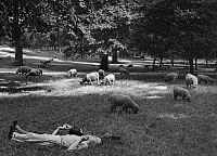 0130060 © Granger - Historical Picture ArchiveLONDON: COUPLE, c1935.   A couple taking a nap in the Green Park in London. Photograph by Kurt Hübschmann, c1935.
