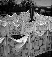 0218340 © Granger - Historical Picture ArchiveDAILY LIFE.   German Empire Free State Prussia - Brandenburg Provinz (Province): Werder: preparations for the Baumbluetenfest, table clothes hanging in in the garden outside - Photographer: Heinz Fremke - Published by: 'Berliner Morgenpost' 17.04.1936 Vintage property of ullstein bild.