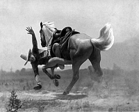 0226624 © Granger - Historical Picture ArchivePEOPLE.   USA, a cowboy shows a stunt on his horse - Photographer: Sennecke - Published by: 'Der heitere Fridolin' 08/1928 Vintage property of ullstein bild.