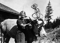 0229796 © Granger - Historical Picture ArchivePEOPLE.   German Empire Bavaria Free State Dairymaid with her decorated favorite cow. - Photographer: Philipp Kester - 1936 Vintage property of ullstein bild.