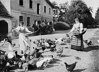 0231392 © Granger - Historical Picture ArchivePEOPLE.   Germany, chicken breeding: women feeding the poultry, date unknwon, probably around 1909, photo by Paul Sielaff.