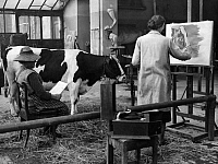 0233304 © Granger - Historical Picture ArchiveFINE ART.   Germany, academies of arts: animal painting class of Angelo Jank at the Academy of Fine Arts Munich, cow Liese acting as a model to painters - Photographer: Wide World Photos - Published by: 'Berliner Illustrirte Zeitung' 1/1934 Vintage property of ullstein bild.